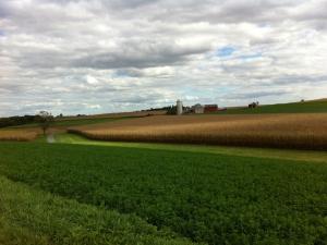 KRYL-farm-landscape-horizontal