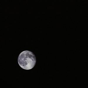 KRYL-moon